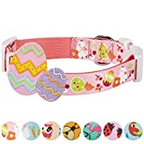 Blueberry Pet 7 Patterns Easter Spring Chick Print Designer Dog Collar in Baby Pink, Medium, Neck 14.5''-20'', Adjustable Collars for Dogs