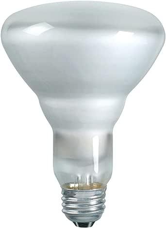 Incandescent Flood Light Bulb, BR30, 65 Watt, 120 Volts ...