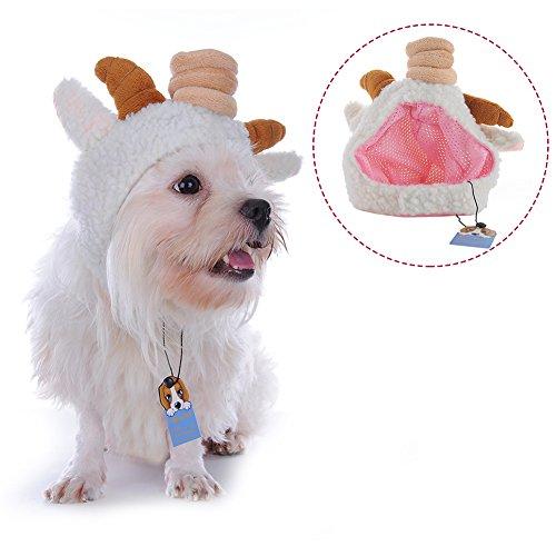Molie (Sheep Horn Costume)