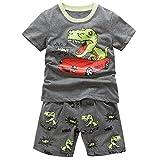 B.GKAKA Boys Summer Pajamas Dinosaur-Charge Toddler Kids Sleepwear 2 Piece Iron Gray 3T