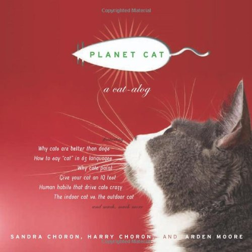 Planet Cat - 1