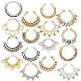 16pcs Set Kit Lot Jewelry Pack of Different 316L Surgical Steel Nose Illusion and Real Piercings With Nose Rings Hoops Hangers Septum Clickers In Different Styles Colors, With Various Decorations