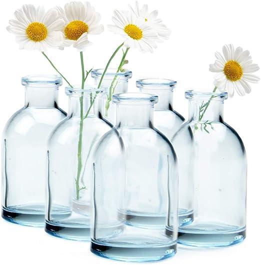 Amazon.com: Chive - Jarrones pequeños de cristal para flores ...