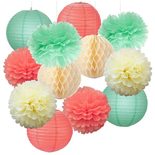 12pcs Mixed Cream Mint Green Coral Party Tissue Pom Poms ...