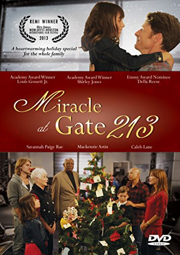 Miracle at Gate 213 by Destiny Image Publishers
