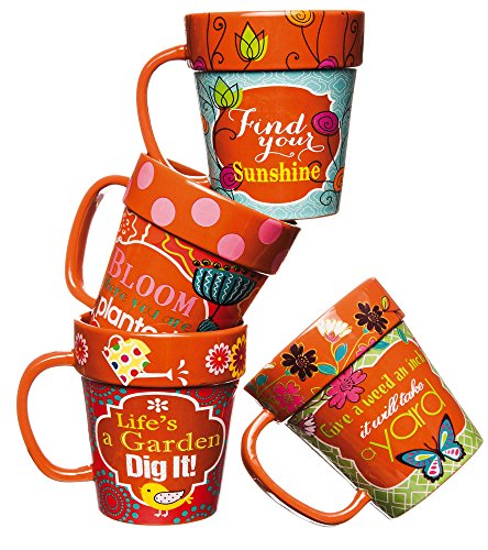 Flower Garden Coffee Cup (Gardener's Whimsy Terra Cotta Flowerpot Mugs – Set of 4)