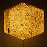 Brownfolds Paper Lantern; Handmade Paper With Real Grass White