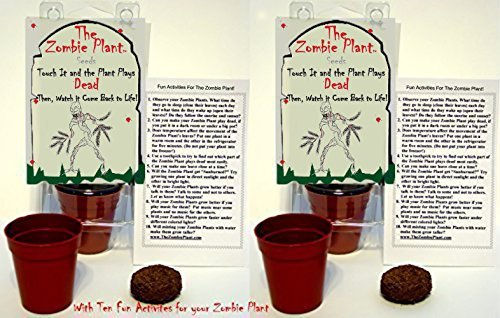 Zombie Plant Party Favors (2) or Goodie Bag Stuffer - Plays Dead When Touched. Includes Soil, Seeds & Mini Flower Pot. Supplies for Zombie Themed Birthday. Plant it as a Party Activity -