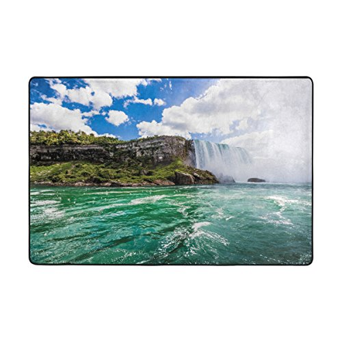 - ALAZA My Daily Niagara-Falls Waterfall Area Rug 2 x 3 Feet, Living Room Bedroom Kitchen Decorative Lightweight Foam Printed Rug