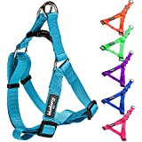 "Blueberry Pet Step-in Harnesses 3/4"" Wide * 19.5-25.5"" Chest Classic Solid Color Adjustable Medium Turquoise Dog Harness, Medium"