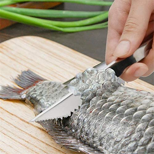 Stainless Steel Fish Scale Peeler Flake Fillet Serrated Knife Clean Convenient Scraping Multipurpose Kitchen Seafood Tool Kangsanli