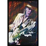 Stevie Ray Vaughan - Domestic Poster