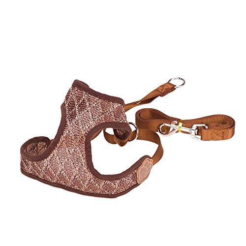 Petperi-No-Pull-Mesh-Dog-Harness-and-Leash-SetSummer-Cool-Dog-ClothesAdjustable-and-Breathable-Dog-Training-Walking-Harness-Leash-Collar-for-LargeMediumSmall-Dog