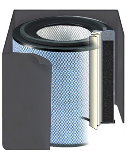 Austin Air Healthmate Jr Replacement Filter w/ Prefilter
