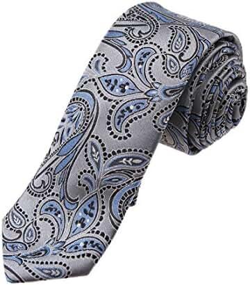 YA-EGQ-B.01 Business Paisley Jacquard Silk Tie World Wide Tie By Y&G