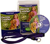 Gentle Leader Head Collar, Size: Large, Color: Red, My Pet Supplies