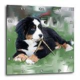 3dRose dpp_4038_2 Bernese Mountain Dog Wall Clock, 13 by 13-Inch