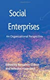 Social Enterprises : An Organizational Perspective, , 0230358799