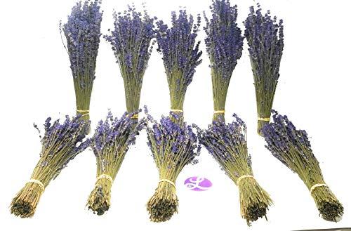 Findlavender - Culinary Lavender Bundles - 11-14