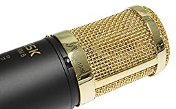 iSK RM 6 Studio Condenser Microphone With iSK SMP-1 Shock Mount, Pop Filter & Case
