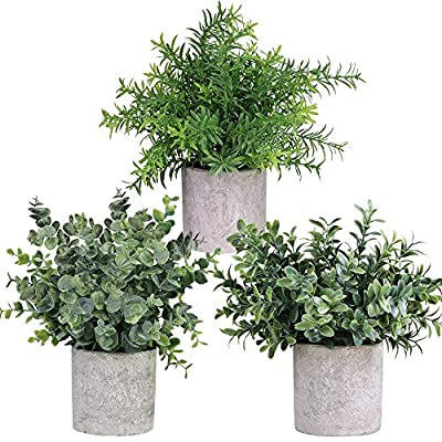"Winlyn Mini Potted Plants Artificial Eucalyptus Boxwood Rosemary Greenery in Pots Faux Potted Herbs Small Houseplants 8.3""-9"" Tall for Indoor Greenery Tabletop Décor Centerpiece 3 Pack"