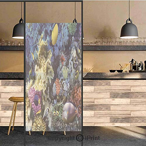 (3D Decorative Privacy Window Films,Colorful Coral Reef and Fishes Colony in Red Sea Egypt Africa Underwater Life Image,No-Glue Self Static Cling Glass film for Home Bedroom Bathroom Kitchen Office 17.)