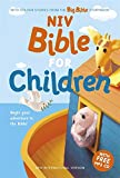 NIV Bible for Children: (NIV Children's Bible) With Colour Stories from the Big Bible Storybook (New International Version)