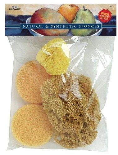 Pro Art PRO-S40 Sea Silk Sponge