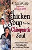 chicken soup for the soul boys - Chicken Soup for the Chiropractic Soul