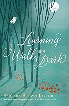 Learning to Walk in the Dark by [Taylor, Barbara Brown]