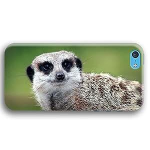 A Meerkat Meercat iPhone 5C Slim Phone Case
