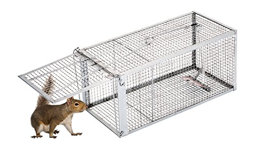 AB Traps Pro-Quality Live Animal Humane Trap Catch and Release Rats Mouse Mice Rodents Squirrels and Similar Sized Pests - Safe and Effective - 16