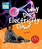 Why Does Electricity Flow? Level 6 Factbook, Rob Moore, 0521137489