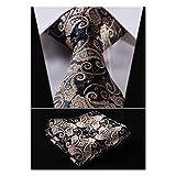 HISDERN Paisley Tie Handkerchief Woven Classic Men's Necktie & Pocket Square Set (Gold & Navy Blue)
