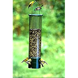 AUDUBON/WOODLINK Bouncer Squirrel Proof Bird Feeder Clear/Green 7.5 Pound Cap