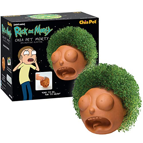 Chia Pet Rick & Morty - Morty Decorative Pottery Planter, Easy to Do and Fun to Grow, Novelty Gift, Perfect for Any Occasion