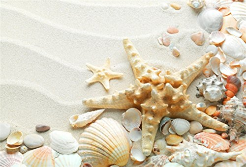 CSFOTO 6x4ft Big Starfish Shell Conch On Sand Background Closeup Seashells Marin Coast Photography Backdrop Beach View Studio Props Kid Artistic Portrait Children Boys Room Decoration Wallpaper