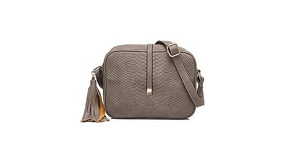 Amazon.com: Pequeño bolsa de hombro para mujeres Messenger ...