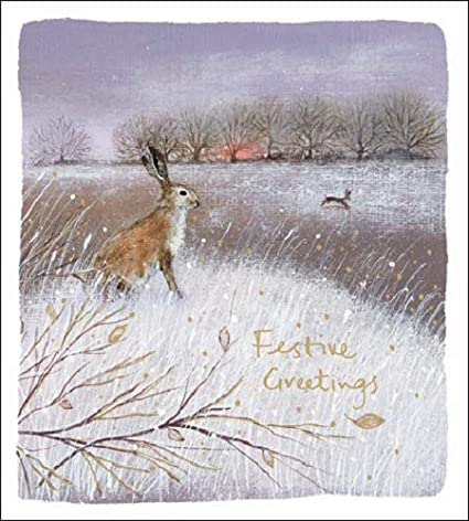 Pack of 5 Winter Day Shelter & Crisis Charity Christmas Cards Cello Packs: Amazon.es: Oficina y papelería