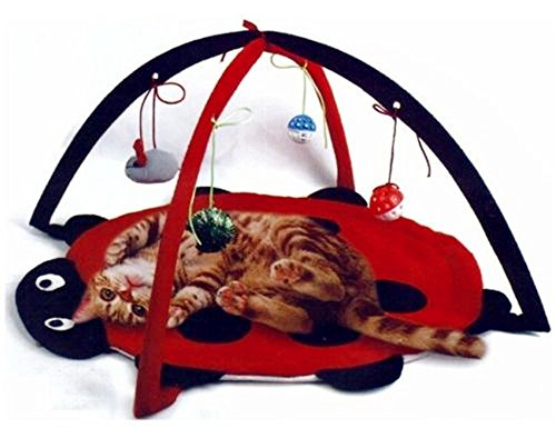 Petty Love House Cat Activity Center with Hanging Toy Balls, Mice & More - Helps Cats Get Exercise & Stay Active - Best Cat Toys on (Ladybug Cat Toy)