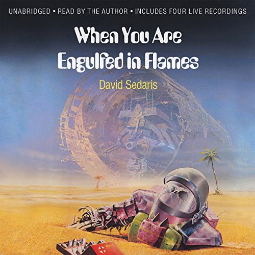 When You Are Engulfed in Flames by Hachette Audio