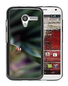 New Custom Designed Cover Case For Motorola Moto X With Me Sting Leaf Dark Summer Nature Phone Case