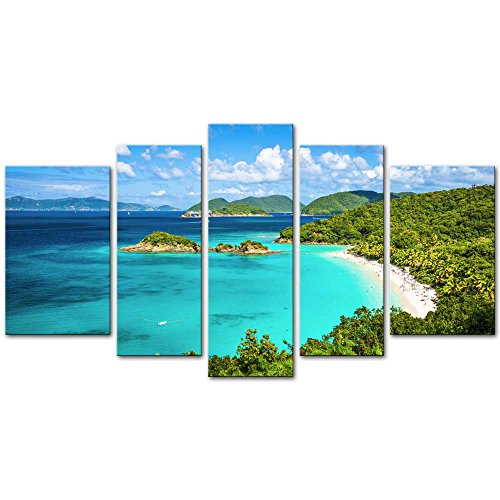 Trunk Bay St John Usvi - Wall Art Decor Poster Painting On Canvas Print Pictures 5 Pieces Trunk Bay St John Virgin Islands United States Seascape Beach Framed Picture for Home Decoration Living Room Artwork