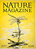 1926 Cover Nature Robert Bruce Horsfall Dragonfly Devil's Darning Needle YNM5 - Original Cover
