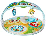 Image of Skip Hop Explore-and-More Amazing Arch Activity Gym, Multi