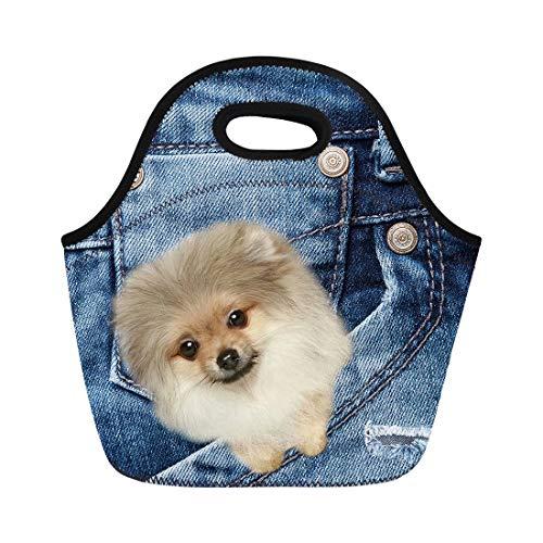 Coloranimal Foldable Insulated Neoprene Lunch Bag Kawaii Blue Denim Animal Pomeranian Dog Pattern Clutch Pouch ()