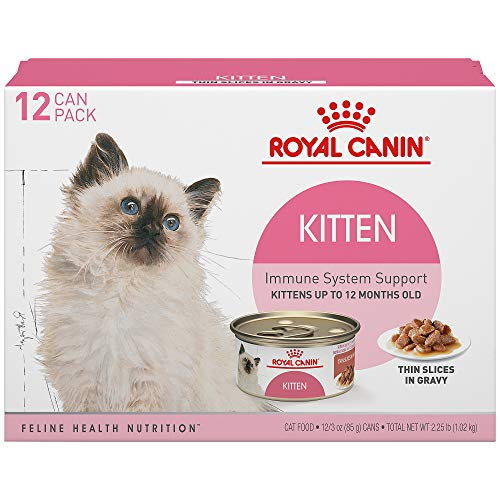 Royal Canin Feline Health Nutrition Thin Slices in Gravy Wet Kitten Food, 3 Ounce Can (12-Pack)