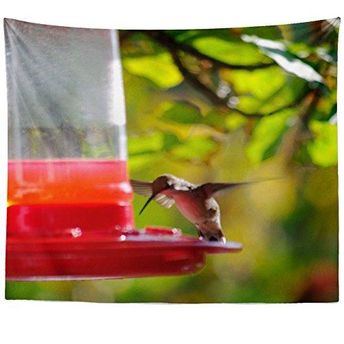 Feeder Hanging Blossom Hummingbird (Westlake Art - Bird Hummingbird - Wall Hanging Tapestry - Picture Photography Artwork Home Decor Living Room - 68x80 Inch (12D77))