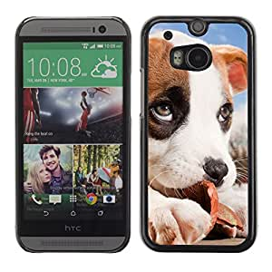 Vortex Accessory Carcasa Protectora Para HTC ONE ( M8 ) - Jack Russell Puppy Beagle Dog Baby -