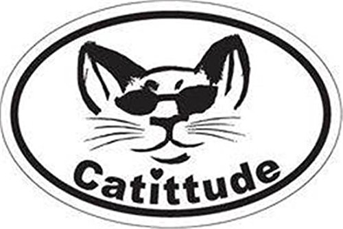 Meows Fridge Flexible Magnet Kitten